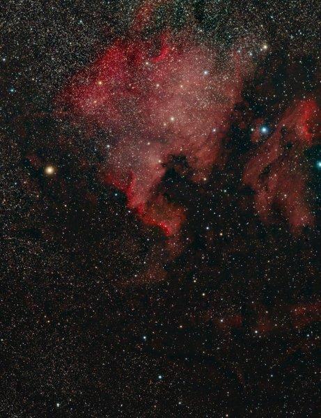 NGC7000 mini-WASP array