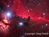 The Horsehead nebula region in Orion