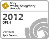 splitsecond shortlisted